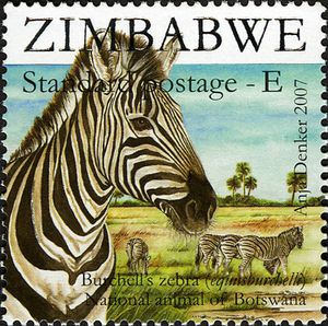 4ad41-sapoa-burchell-s-zebra-national-animal-of-botswana
