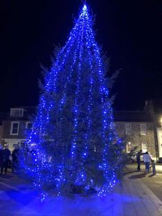 Wigtown Tree